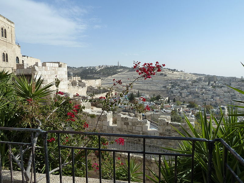 Flowers in the Old City of Jerusalem (Image: CC BY SA 4.0 Djampa via Wikimedia Commons)