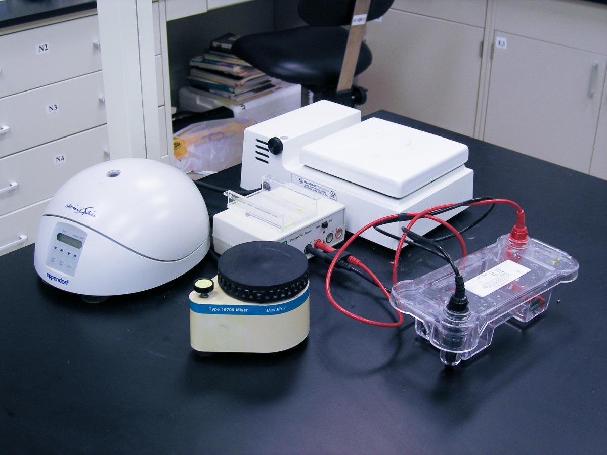 lab-sound-011
